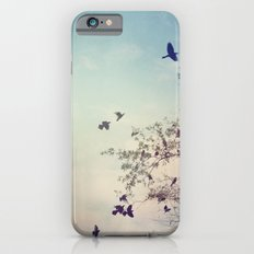 Birds of Clearwater iPhone 6 Slim Case