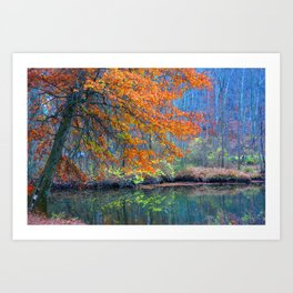 Fall on the River Art Print