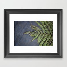Last Fern of Fall Framed Art Print