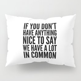 If You Don't Have Anything Nice To Say We Have A Lot In Common Pillow Sham