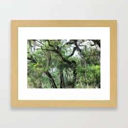 Hiking in Florida Framed Art Print