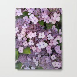 Bain Ave Flowers Metal Print