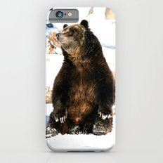 Chillin' Bear Slim Case iPhone 6s