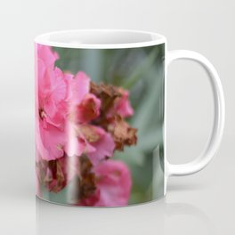 pink beatifl flower of the passion , passion flower , beaty in nature Coffee Mug
