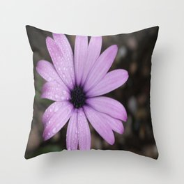 Bejewelled Beauty Poetry in Motion Throw Pillow