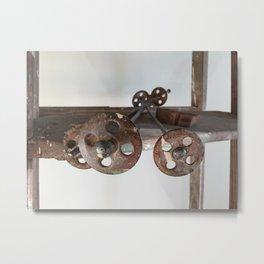 Rusty Rungs Metal Print