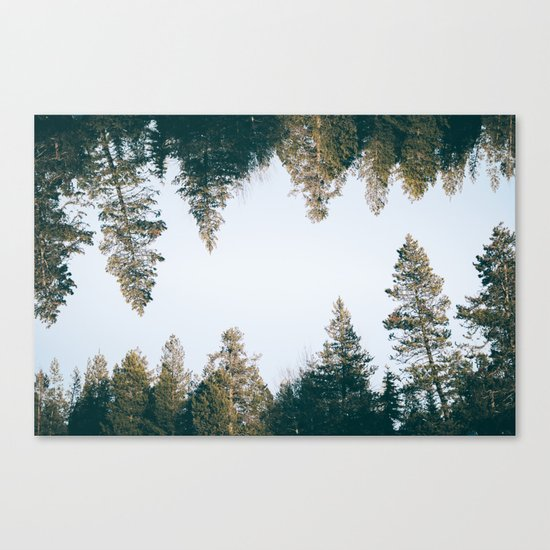 Forest Reflections IX Canvas Print