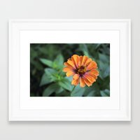 rileigh smirl Framed Art Prints featuring Orange and Pink by Rileigh Smirl