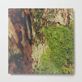 Moss Landscape II Metal Print