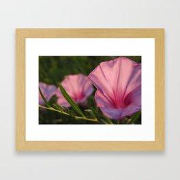 Black Hills flower Framed Art Print