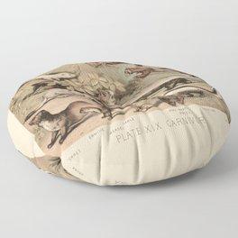 Mustelids Floor Pillow