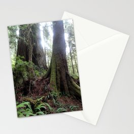 Giant Redwoods Rainforest 04 Stationery Cards