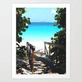 Trunk Bay walkway to beach, St. John Art Print