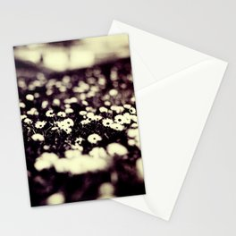 flowers field III Stationery Cards