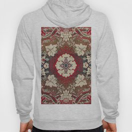 Botanical Embroidery III // Flowery Colorful Red Blue Green Yellow Tan Ornate Accent Rug Pattern Hoody