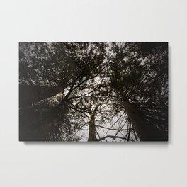 Treetop Rendevous Metal Print