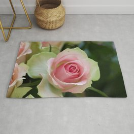 Rosy disposition Rug