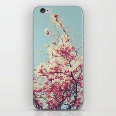 Retro Blossoms iPhone & iPod Skin