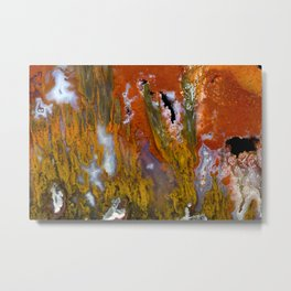 Cady Mountain Tube Agate Metal Print