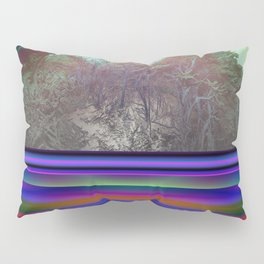 Point Lobos By Kenny Rego Pillow Sham