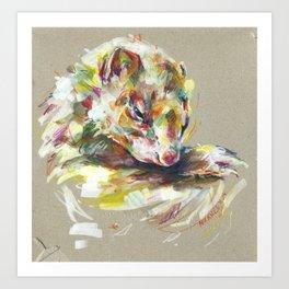 Ferret IV Art Print