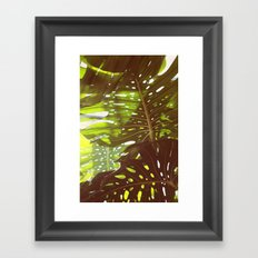 Let Light In Framed Art Print
