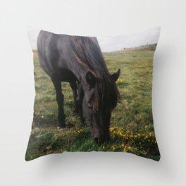 Dartmoor pony #2 Throw Pillow