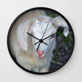 White Baby Goat Wall Clock