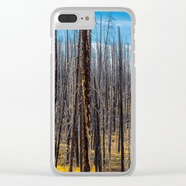 Standing Trees Clear iPhone Case