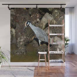 Yellow Crowned Night Heron Wall Mural