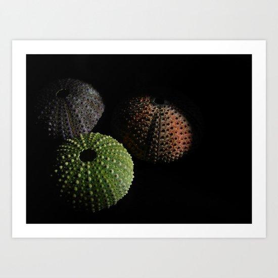 _3_ Art Print