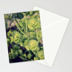 timely Stationery Cards