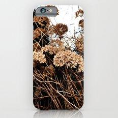 bronze Slim Case iPhone 6s
