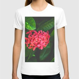 Secret Red Bunch Of Blowers Among Bright Green Leaves Nature Art T-shirt