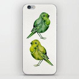 Parakeets iPhone Skin