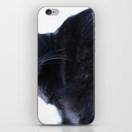 Simon the Black Halloween Sanctuary Cat iPhone Skin