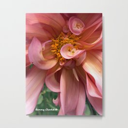 Peachy Swirls Metal Print