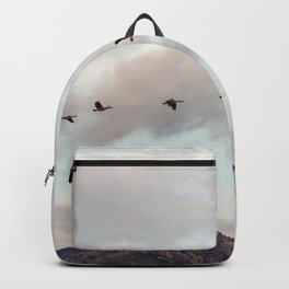 Migration of the Birds // Mountain and Sky Meets Nature Landscape Photography of Wildlife Backpack