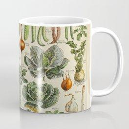 VEGETABLES Legumes Et Plantes Potageres Vintage Scientific Illustration French Language Encyclopedia Coffee Mug