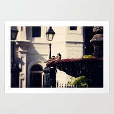 Birds in the Fountain Art Print