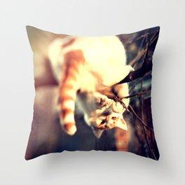 Lomo Cat Throw Pillow