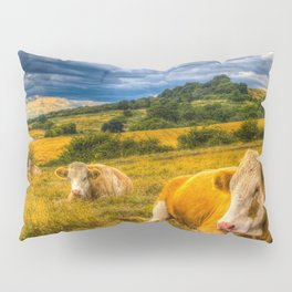 Resting Cows Pillow Sham