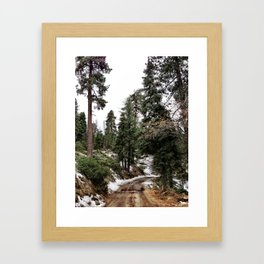 Big Bear Trail Day Framed Art Print
