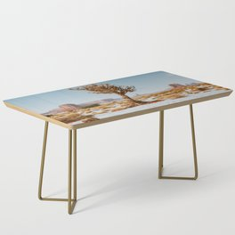 Monument Valley Juniper Coffee Table