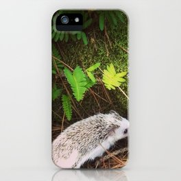 Juni Hedgehog In the Woods iPhone Case