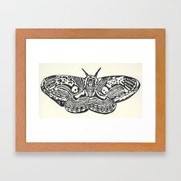 Brahmin Framed Art Print