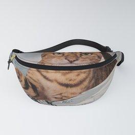 CAT Fanny Pack