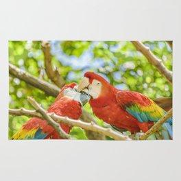 Ecuadorian Parrots Kissing at Zoo, Guayaquil, Ecuador Rug