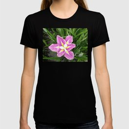Standing Out T-shirt