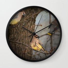 Winter Visitors Wall Clock